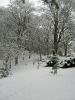 Lesopark a naučná stezka v zimě 2011